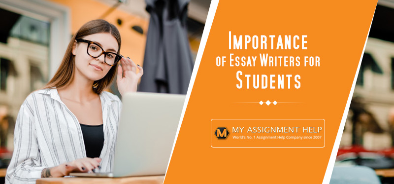 Importance of Essay Writers