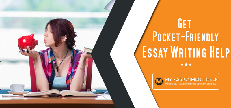 Pocket-Friendly Essay Writing